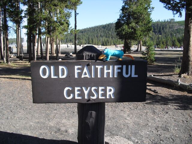 File:Old Faithful-Reliable Geyser.jpg