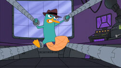 Perry trapped.jpg