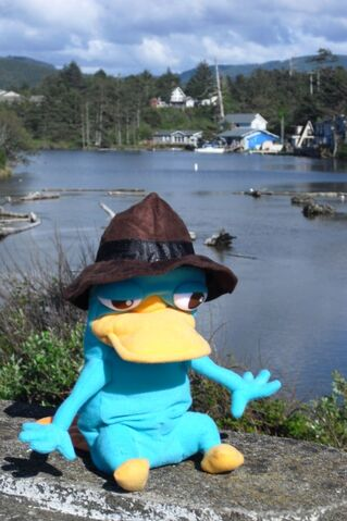 File:D River - Agent P on bridge.jpg