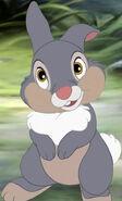 Thumper (4)