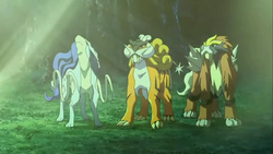 Shiny Suicune, Raikou, and Entei