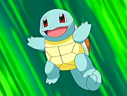 Squirtle Starter
