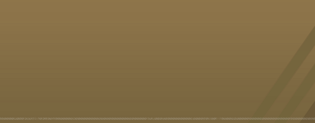 File:Large Brown Background Reverse.png