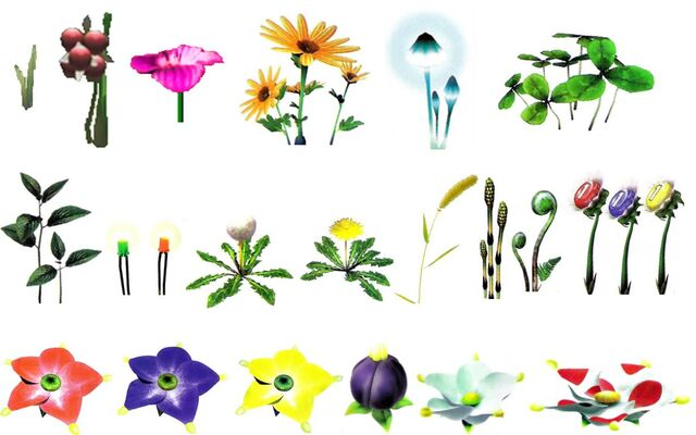 File:Pikmin 2 Plants.jpg