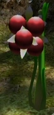File:Spiderwort.jpg