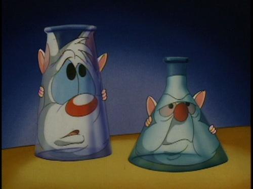 File:Lab mice.jpg