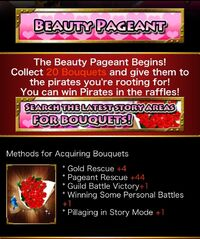 Beauty Pageant 2