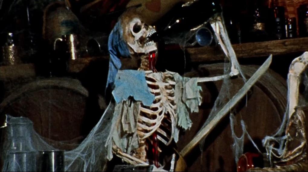 dracula dog halloween costume