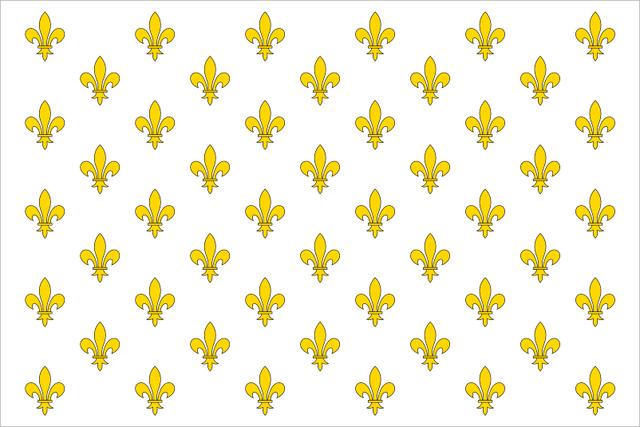 File:Frenchflag.png