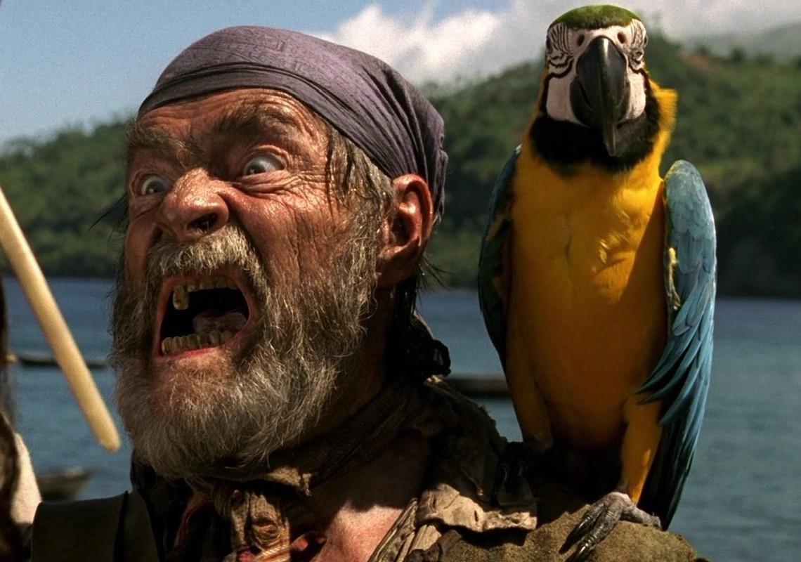 Cotton's Parrot   PotC Wiki   Fandom powered by Wikia