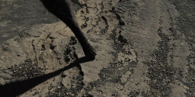 File:Hector Barbossa peg leg.jpg