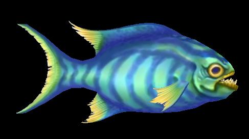 File:Fish 13.png