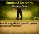 Buttoned Breeches