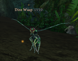 Dire Wasp