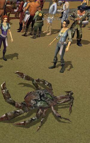 File:Crabpotion.jpg