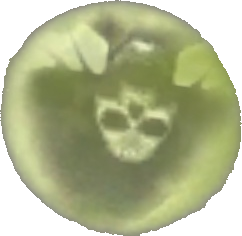 File:The Muertos Moon Upside Down.png