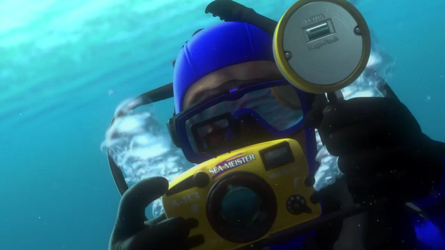 File:FindingNemo-A113.png