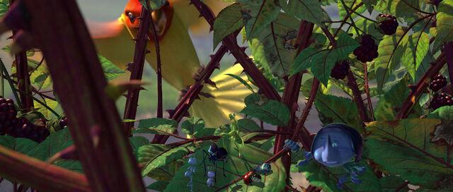 File:Bugs-life-disneyscreencaps com-5298.jpg