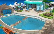 Imageclub penguin