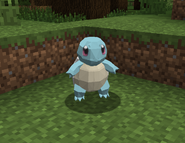 Squirtle norm