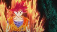 Son Gokū Super Saiyanin God (18)