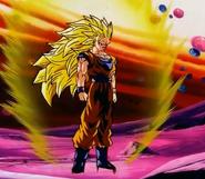 Goku 17