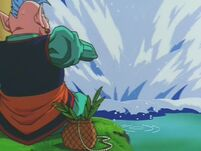 Północny Kaiōshin zacina wędkę, gdyż na jego łowisko wpadł Południowy
