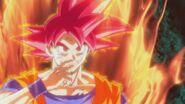 Son Gokū Super Saiyanin God (19)