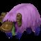 Bawolus