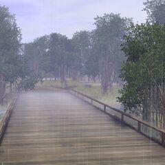 Deszcz w Twinbrook