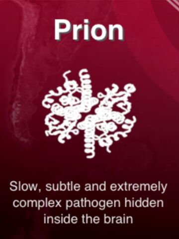 File:Prion.jpeg