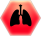 File:Lungs@2x.png