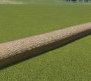 Log Whole