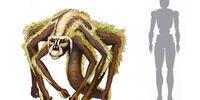 Domaca Monkey