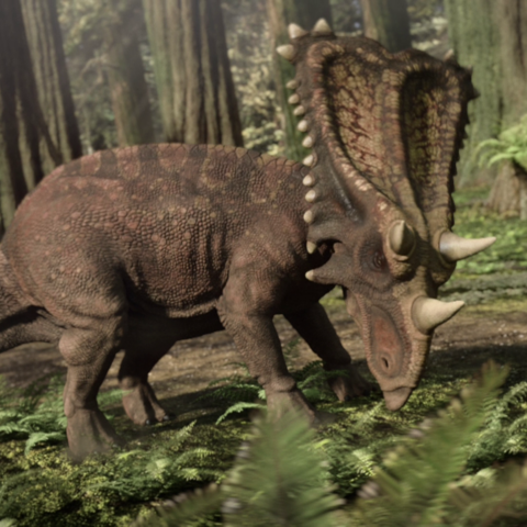 File:ChasmosaurusPortrait.png