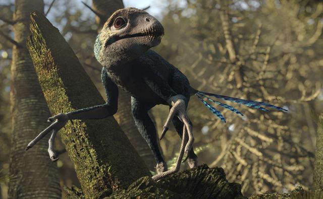 File:Epidexipteryx-promo.jpg