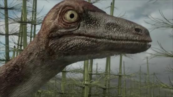 Bradycneme | Planet Dinosaur Wiki | FANDOM powered by Wikia