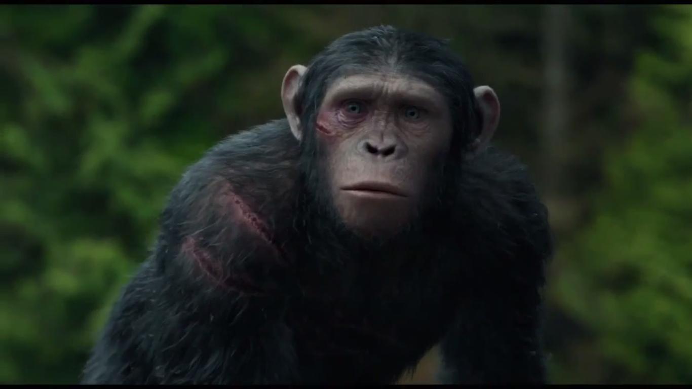 ashrelationships planet of the apes wiki fandom