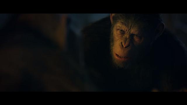 File:WPOTA Caesar asking Bad Ape where he got the MRE.png