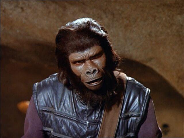 File:Gorilla aide.jpg