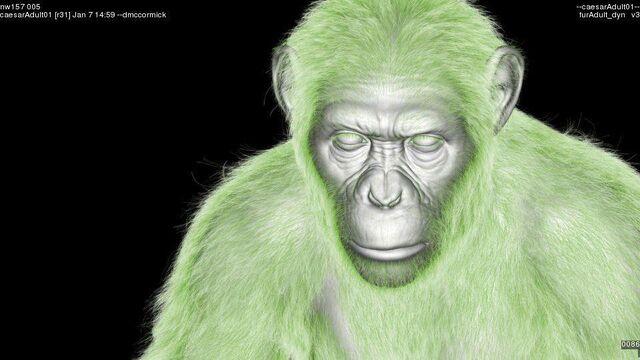 File:CG Chimp 3.jpg