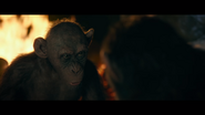 WPOTA Bad Ape tells Caesar he won't take them to the LHS