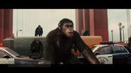 Rise of the Planet of the Apes17