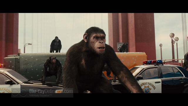 File:Rise of the Planet of the Apes17.jpg