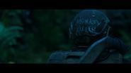 WPOTA Monkey Killer