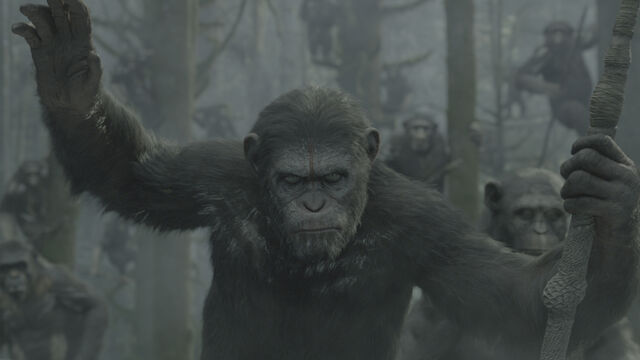 File:Dawn-of-the-planet-of-the-apes-51ebf72075c1a.jpg