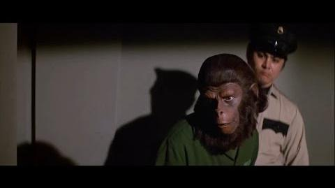 Conquest of the Planet of the Apes (1972) Caesar is paired with Lisa