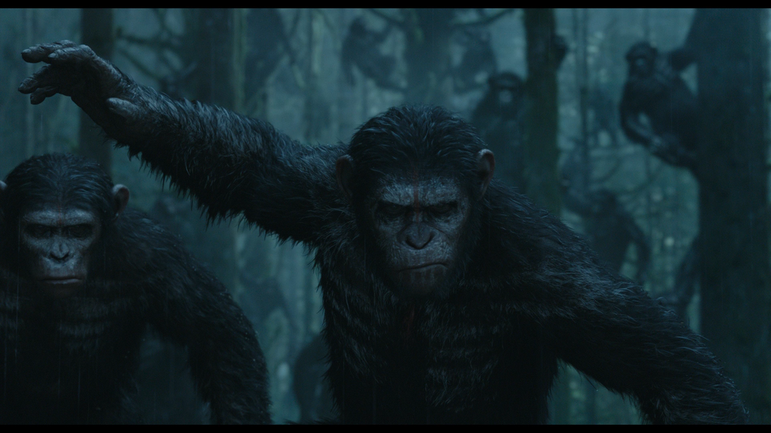 image caesar with blue eyespng planet of the apes