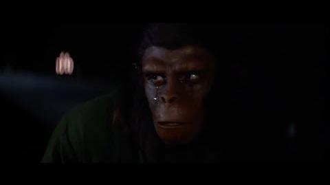 Conquest of the Planet of the Apes (1972) Caesar's reaction to Armando's death