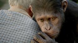 Charles Comforting Caesar